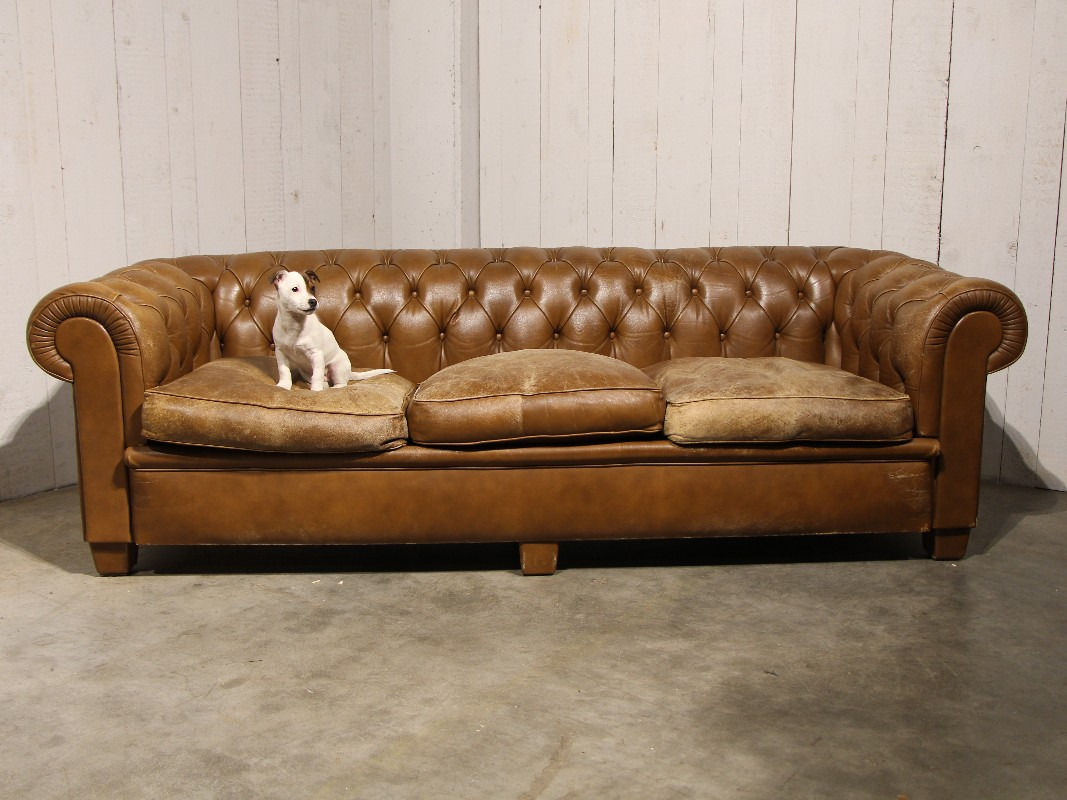 Antique Chesterfield Sofa In Brown Leather Seating Rh Antiqueswarehouse Be Second Hand Warehouse